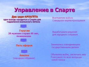 Основные органы гос управления в древней спарте