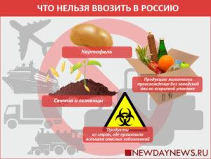 Можно ли вввозить в россию сало из беларуси