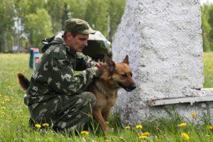 Кинологический питомник дмитров официальный сайт