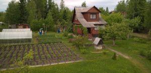 Поменять коллективное садоводчество на садоводчкство