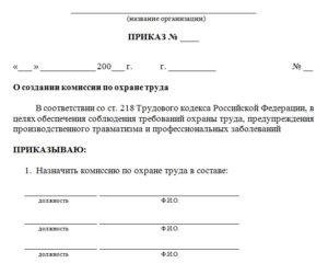 Приказ о создании комиссии по проверке исполнения обязанностей