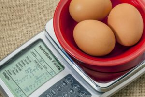 Сколько стоит орган яичко