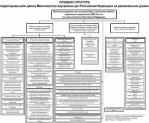 Приказ мвд 333 от 30 04 2011 с изменениями 2020