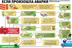 Действия водителя при дтп с альфастрахование