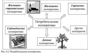 Преобразование садоводческого потребительского кооператива в тсн