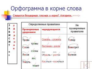Гласный звук в корне слова орфограмма