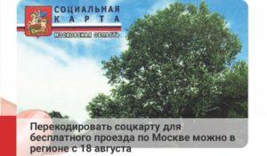 Проезд в москве по социальной карте жителя московской области