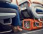 Правила перевозок животных на самолете по россии